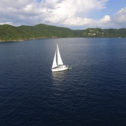 Snorkeling and Sailing morning cruise