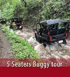 Side by side 5-seaters tour