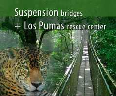 Suspension Bridges + Finca Verde Lodge
